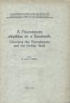 A Pázmáneum alapítása és a Szentszék
